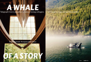 2016 Photo Series Bronze, Cottage Life, A Whale of a Story